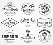 stock photo of food plant  - Vector bio concept badges created for any use - JPG
