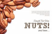 image of pecan nut  - Background texture of assorted mixed nuts including cashew nuts - JPG