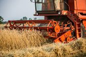 pic of harvest  - harvester in a wheat field during summer harvest - JPG