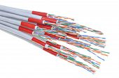 foto of cat5  - Computer network cables isolated on white background - JPG