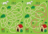 pic of maze  - Dog maze for kids with a solution - JPG