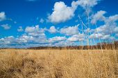 image of veld  - Steppe landscape on the background of the sky with clouds - JPG