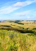 stock photo of senesi  - Crete senesi characteristic landscape in province of Siena (Tuscany Italy) at summer.