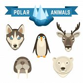 pic of caribou  - Polar animals decorative icons set with pinguin deer walrus white bear isolated vector illustration - JPG