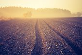 pic of plowed field  - Sad autumnal landscape with plowed fields - JPG
