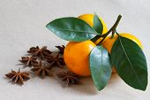 picture of mandarin orange  - Mandarin orange and some spices on the table - JPG