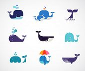 foto of whale-tail  - Collection of vector whale icons and illustrations - JPG