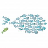picture of fish  - Fish template  - JPG