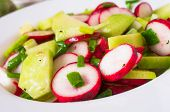 image of radish  - Salad from different kinds of radishes and green onions - JPG