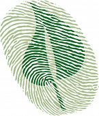 green leaf fingerprint
