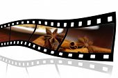 Film strip with cinnamon and badian