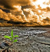 stock photo of environmental pollution  - Cracked pollution ground - JPG