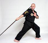 Постер, плакат: Учитель боевых искусств