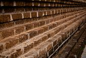 picture of tora  - Laterite wall background - JPG
