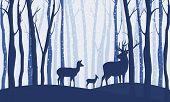 Deer In Winter Forest Vector Image. Wildlife. poster