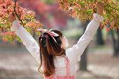 image of lolita  - japanese girl in sweet lolita cosplay style in autumn scenery - JPG