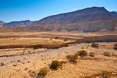 picture of samaria  - Dry Riverbed in Sand Hills of Samaria Israel - JPG