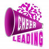 Megaphone-cheer Used By Cheerleaders poster