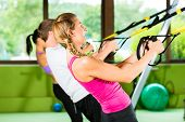 stock photo of suspension  - Group of people exercising with suspension trainer in fitness club or gym - JPG