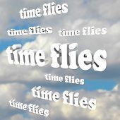 pic of time flies  - The words Time Flies in a blue cloudy sky - JPG