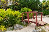 Japanese garden at the Bermuda Botanical Gardens in Hamilton, Bermuda. Known as the Zen Garden.