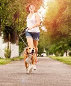 stock photo of puppy beagle  - Happy young woman jogging with her beagle dog - JPG