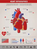 stock photo of ecg chart  - Human Heart health - JPG