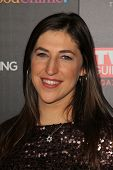 Mayim Bialik at TV Guide Magazine's Annual Hot List Party, Greystone Mansion Supperclub, Beverly Hil