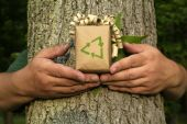 picture of recycled paper  - Unrecognizable Environmentalist person holding gift with recycling symbol in front of tree bark and leaf - JPG