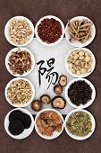 stock photo of yang  - Chinese herbal medicine with calligraphy script on rice paper with yang herb selection - JPG