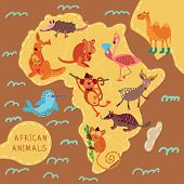 stock photo of quokka  - Map of Africa with cute animals in vector - JPG
