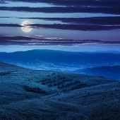 stock photo of coniferous forest  - of mountain range with coniferous forest at night in moon light - JPG