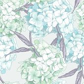 stock photo of hydrangea  - Beautiful Blue Hydrangea - JPG
