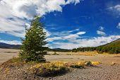 image of pampa  - The endless expanse of Patagonian pampas - JPG