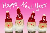 image of gnome  - Happy New Year 2015  - JPG
