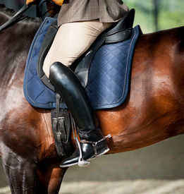 foto of horse-riders  - Horse riding - JPG