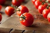 foto of vines  - Raw Organic Red Cherry Tomatoes on the Vine - JPG