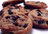 stock photo of chocolate-chip  - Chocolate chip cookie - JPG