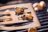 picture of champignons  - Champignon white mushrooms on spatula grilled on BBQ with seasoning - JPG