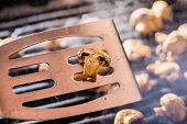 pic of champignons  - Champignon white mushrooms on spatula grilled on BBQ with seasoning - JPG