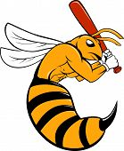 pic of bat  - Cartoon style illustration of a kiiller bee baseball player holding bat batting viewed from the side set on isolated background - JPG
