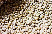 picture of soy bean  - Soy beans inside box really to sale - JPG