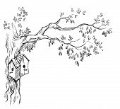 picture of tree house  - bird houses on a tree - JPG