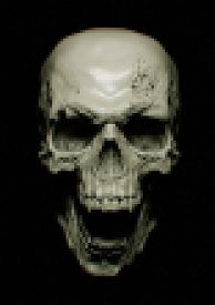 picture of pixel  - dark scream scary skull pixel blur pixelization - JPG