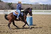 picture of barrel racing  - A young blond woman turns around a barrel and races to the finish line - JPG