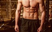Male Torso, Muscular Macho With Six Packs, Gym On Background, Close Up. Sportsman, Athlete With Musc poster