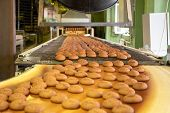 Bakery Production Line Or With Fresh Sweet Cookies On Conveyor Belt. Equipment Machinery In Confecti poster
