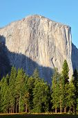 The well-known rocky monolith Al-Capitan in Yosemite national park on a sunset poster