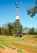 picture of jimmy  - Jimmy Carter National Historic Site  windmill - JPG