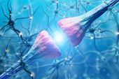 Neuron Close Up poster
